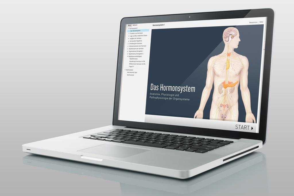 Lernmodul Hormonsystem | Ischler Institut