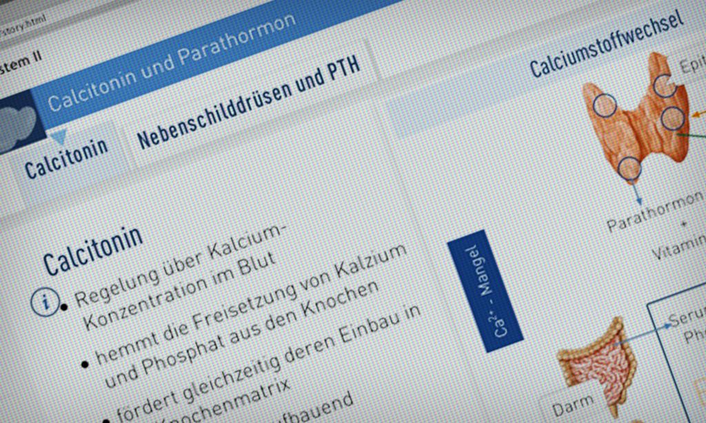 Gemütlich Menschliche Hormone Arbeitsblatt Bilder - Arbeitsblätter ...