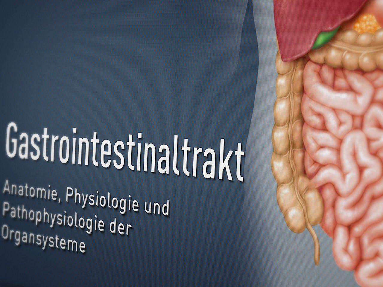 iSMK Modul Gastroenterologie