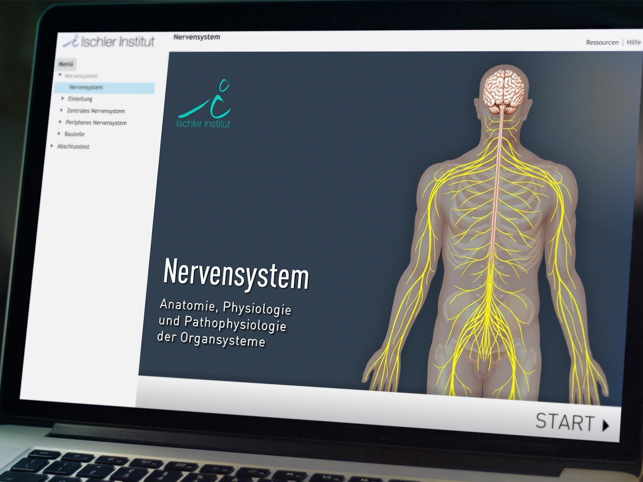 iSMK Modul Nervensystem